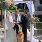 Tania and Robert's Wedding
